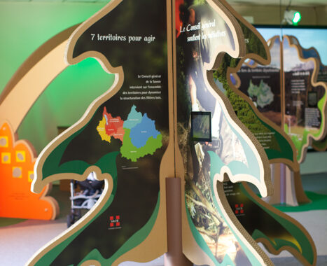 Exposition Année internationale de la forêt (73) - 2