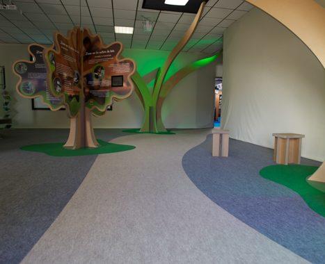Exposition Année internationale de la forêt (73) - 5