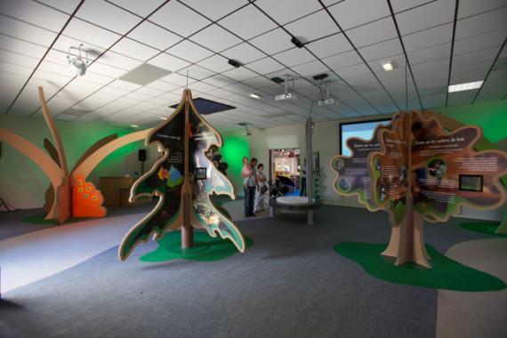 Exposition Année internationale de la forêt (73) - 6