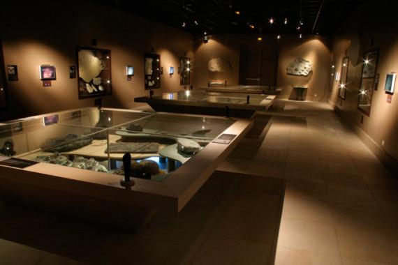 Muséum d'Histoire Naturelle de Grenoble (38) - 3