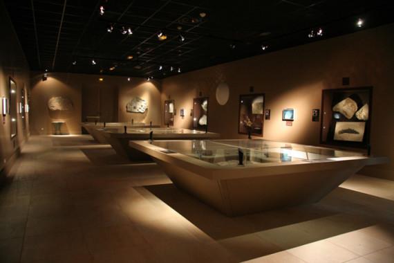 Muséum d'Histoire Naturelle de Grenoble (38) - 6
