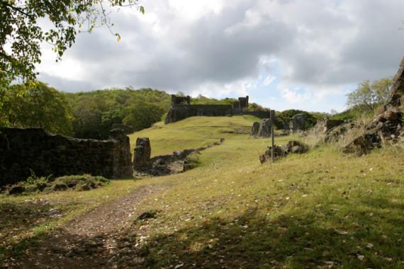 Sentier sonore du château Dubuc (Martinique) - 1