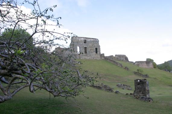 Sentier sonore du château Dubuc (Martinique) - 6