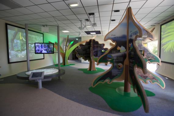 Exposition Année internationale de la forêt (73) - 8