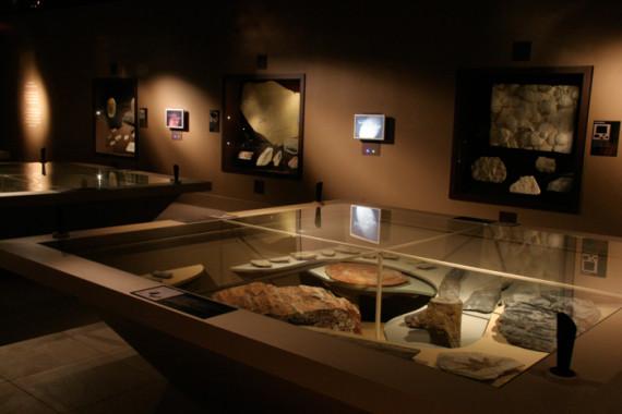 Muséum d'Histoire Naturelle de Grenoble (38) - 1