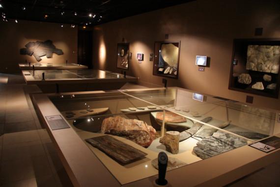 Muséum d'Histoire Naturelle de Grenoble (38) - 11